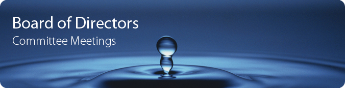 Board of Directors Committee Meetings Banner - water bubble rising from splash.